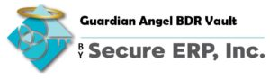 Guardian Angel BDR Vault by Secure ERP